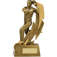 Cricket Trophy 210mm