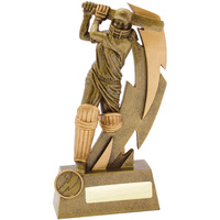 Cricket Trophy 230mm