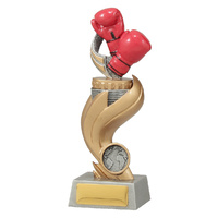 Boxing Trophy 195mm