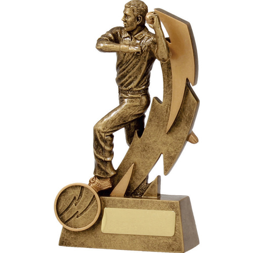 Cricket Trophy 160mm